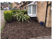 My 3 Bedroom semi-detached house in Drayton norwich for a 3 bed house in Bromley London