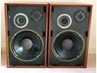 Goodmans Magnum K2 Vintage Speakers