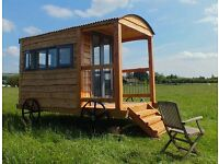 Shepherd hut, glamping pod, office, spare room, potting shed, space, perfect office, wooden retreat