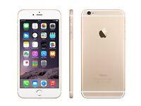 iPhone 6s Plus 16GB Gold Unlocked Brand New 1 Year Apple Warranty!