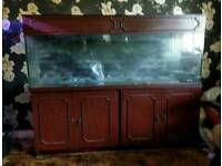 350L Aquarium & Cabinet