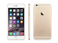 iPhone 6 Plus Gold 16 GB- New And Unlocked With AppleCare - Best Offer Accepted
