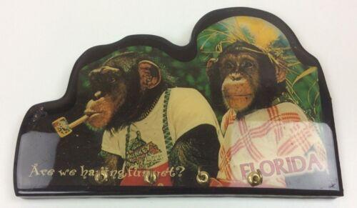 Are We Having Fun Yet? Dressed Up Monkeys Wall Mount Key Hooks Florida Souvenir
