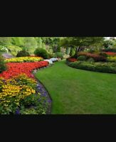 Easy lawn property managment