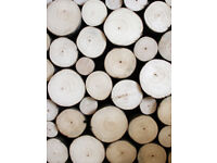 SMALL 2-5cm LOG SLICES, cut tree branch slices for crafts, mozaics, art work