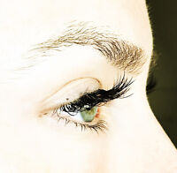 Classic Lash Refresher Course - Left in the dark previously?