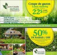 Entretien de pelouse, Coupe de Gazon / Lawn care Westisland