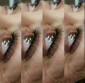 Christmas Special Full Set Of Synthetic Eyelashes $60 Kitchener / Waterloo Kitchener Area image 3