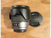 Panasonic Lumix 14-140mm f4-5.8 MEGA O.I.S
