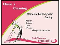 experience house cleaning and key holder. domestic cleaning and ironing spring clean.end of tenancy