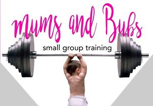 Mums and Bubs . small group training Wattle Grove Liverpool Area Preview