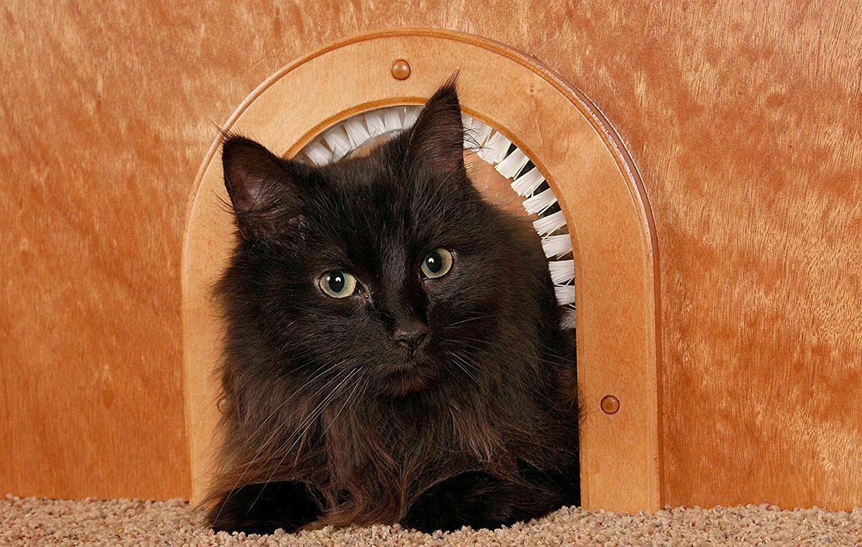NEW CATHOLE WOODEN PET DOOR FOR CATS WITH REMOVEABLE CLEANIN