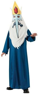Child Cartoon TV Show Adventure Time Evil Villain Ice King Magic Wizard Costume - Adventure Time Kids Costumes