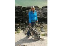 Dog walking & Pet care