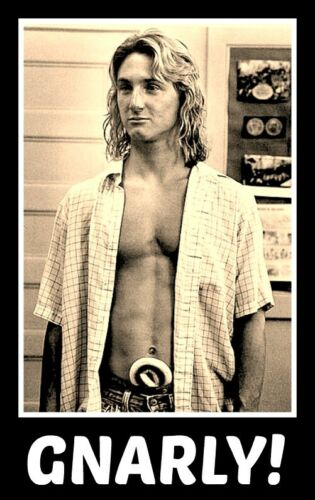 "4.5"" Spicoli GNARLY! vinyl sticker. Fast Times at Ridgemont High decal for car."