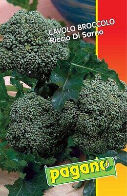 Bustina di Cavolo broccolo riccio di Sarno con circa 750 semi orto verdure
