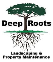 Deep Roots Landscaping, Lawn care, and Property Maintenance