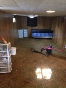 Basement area for rent ( must love dogs )