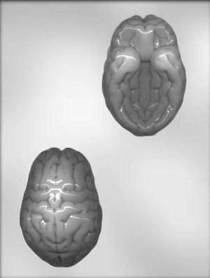 3D Brain Halloween Chocolate Candy Mold from CK #3310 - Brain Mold Halloween