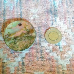 Medium sized abalone shell