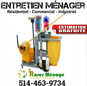 Entretien ménager, nettoyage, household, housekeeper, ménage