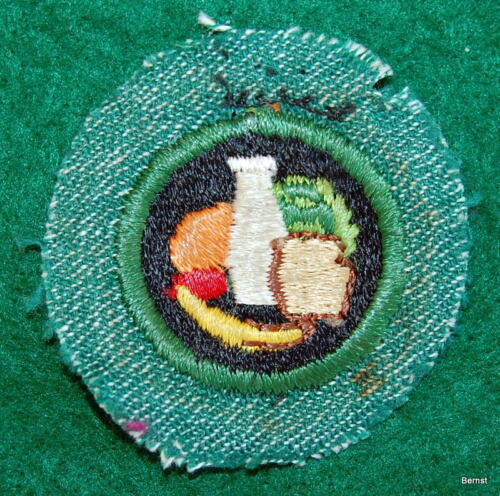 VINTAGE GIRL SCOUT BADGE - BRIGHT MEDIUM GREEN - NUTRITION