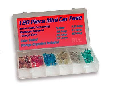 120 Piece Mini Car Fuses - Color Coded Automotive Fuse Assortment w/ Storage (120 Piece Car Fuse)