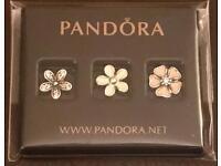 Pandora Genuine Petite Locket Charms