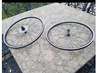 **Brand New** Roval slx24 road bike wheels
