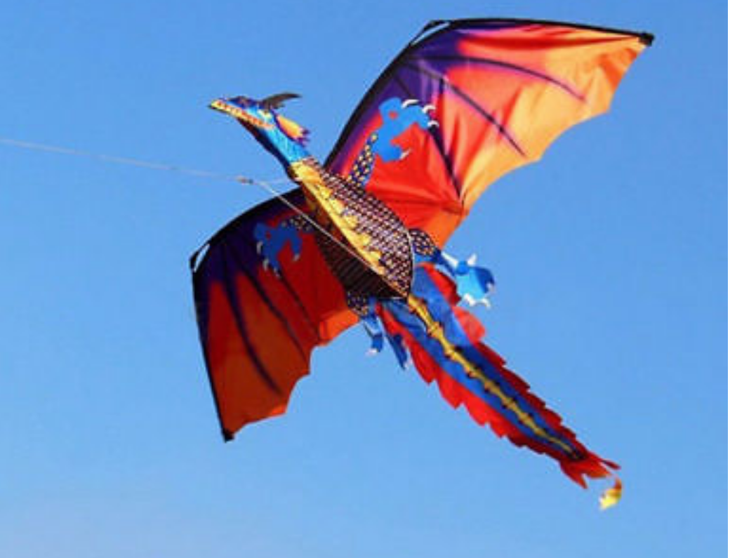 3D Dragon Single line Kite for Adult , Kids Classical Sports