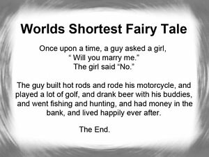 WORLDS-SHORTEST-FAIRY-TALE-FOR-BACHELORS-SINGLE-GUYS-HUMOROUS-BEER-FRIDGE-MAGNET
