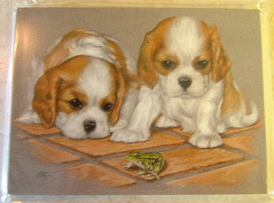 CAVALIER KING CHARLES SPANIEL CARD - LEFT BLANK FOR YOUR MESSAGE NO 24