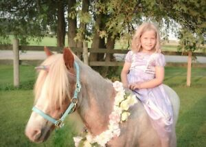 Pony rides & unicorn parties!