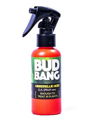 600w Grow light Spray Bud Bang GA3 220ppm Gibberellic Acid on 50 Plants 3x100ml