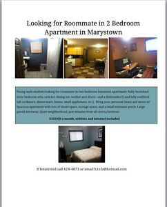 Son looking for roommate in Marystown