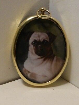 Miniature portrait of pug in an oval brass bezel