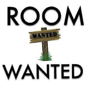 Looking for a single room to rent