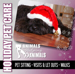 Animals Helping Animals Pet Sitting And Dog Walking Services Downtown-West End Greater Vancouver Area image 8