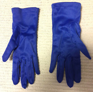 Satiny Blue Gloves