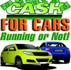 Top $$$ for scrap cars