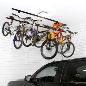Bicycle Lift Kit  (motorized and easy to install)  - $100 OFF!