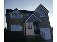 SFG soffits, fascias, guttering. Roofing and repairs