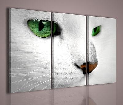 QUADRI MODERNI CAT QUADRO MODERNO GATTO ARREDAMENTO CASA TRITTICO ARREDO ANIMALI