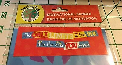 Teacher Resource  Motivational Banner   Character Building   Limits