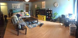 Large 4 bedroom apartment for rent