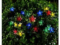 Multi Coloured Blossom String Lights 20 Pk