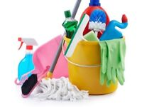 Domestic cleaner £9ph
