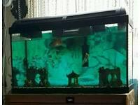 Aquarium Marina 60l Full Set