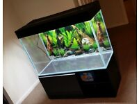 Modern Optiwhite Fish Tank / Aquarium FULL SET UP