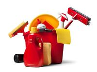 Experienced cleaner? Looking for part time work with cash in hand? Live in the Lewknor area?